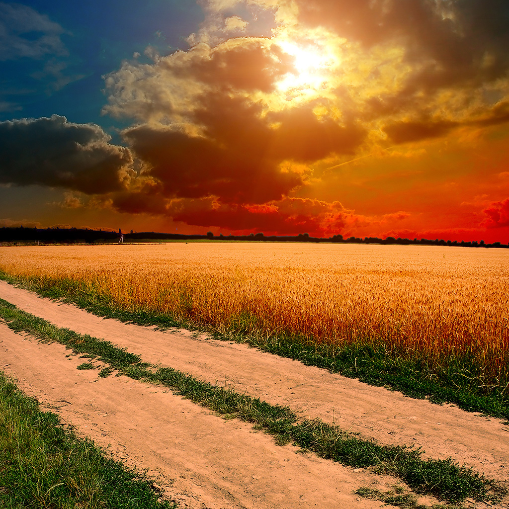 wallpaper-ml99-hot-sunny-day-nature-farm-wallpaper