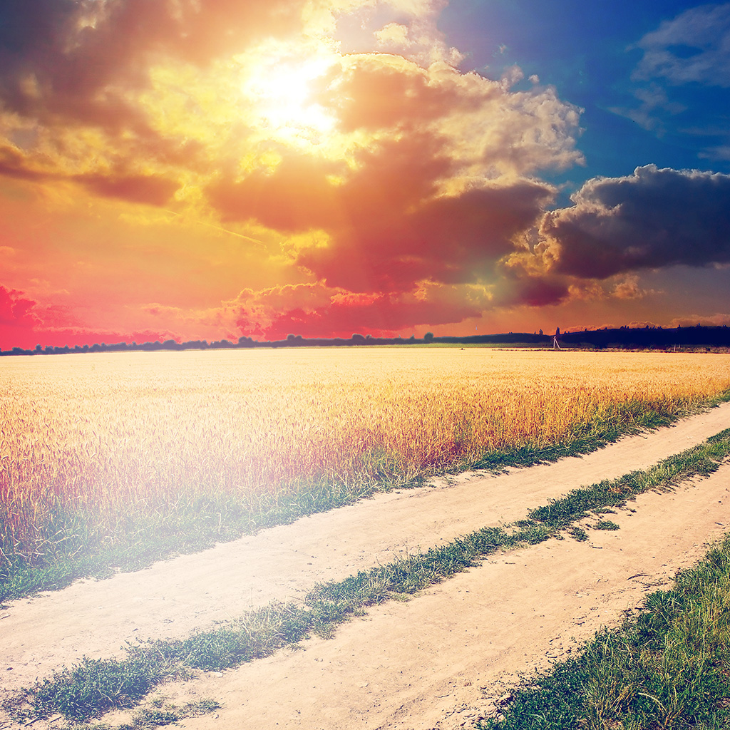 android-wallpaper-mm01-hot-sunny-day-awesome-instagram-look-nature-farm-wallpaper