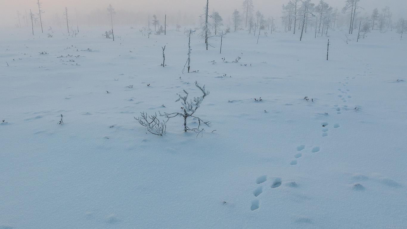 desktop-wallpaper-laptop-mac-macbook-airmm49-snow-walk-winter-footprints-nature-mountain-wallpaper