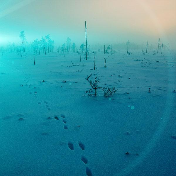 iPapers.co-Apple-iPhone-iPad-Macbook-iMac-wallpaper-mm50-snow-walk-winter-blue-footprints-nature-mountain-wallpaper