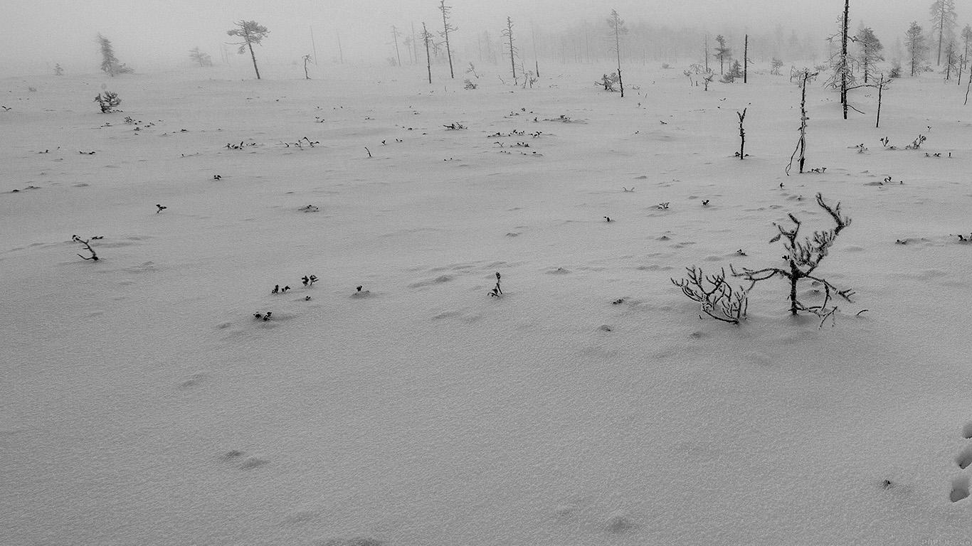 desktop-wallpaper-laptop-mac-macbook-airmm51-snow-walk-winter-white-footprints-nature-mountain-wallpaper