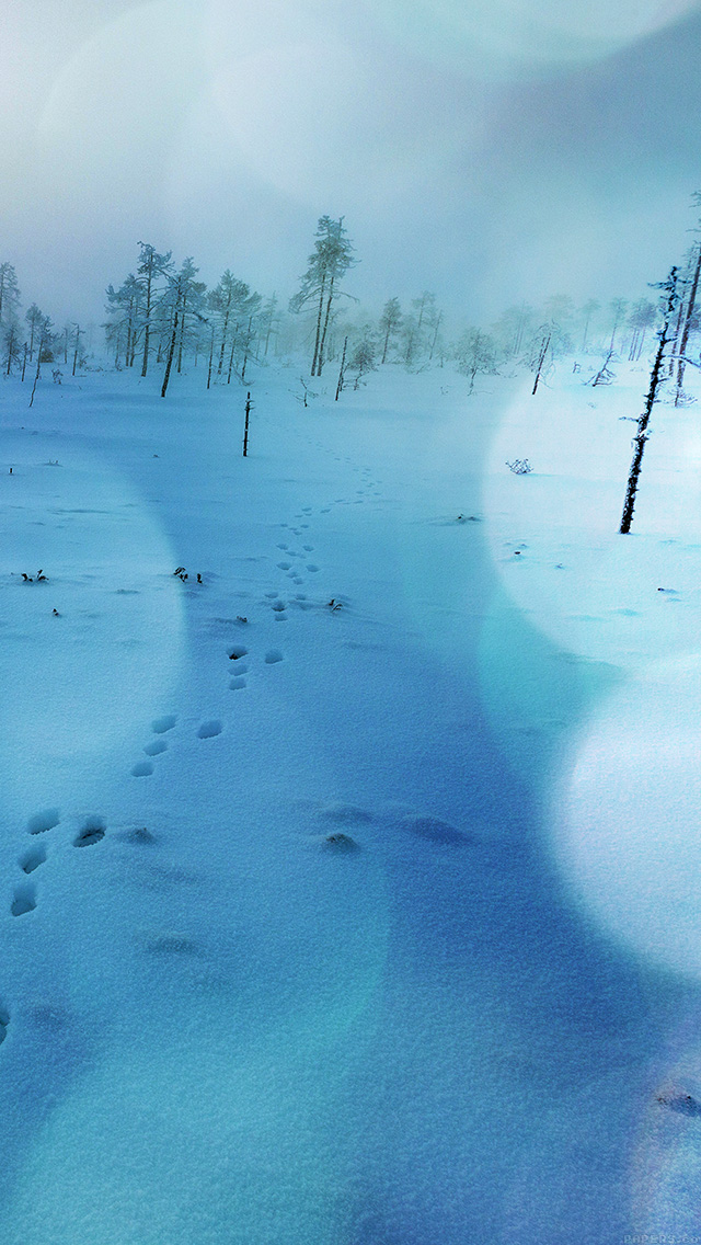 freeios8.com-iphone-4-5-6-plus-ipad-ios8-mm52-snow-walk-winter-blue-bokeh-footprints-nature-mountain