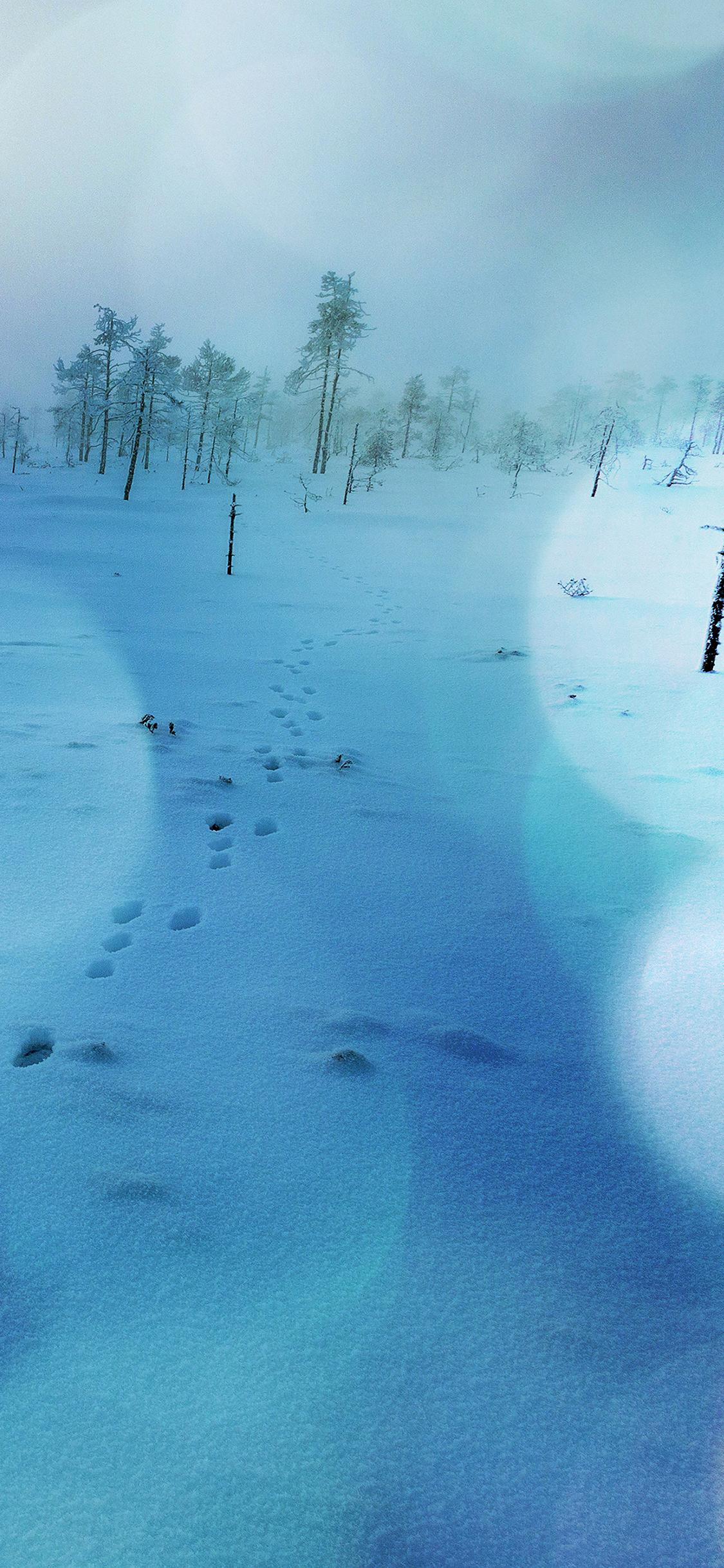 iPhoneXpapers.com-Apple-iPhone-wallpaper-mm52-snow-walk-winter-blue-bokeh-footprints-nature-mountain