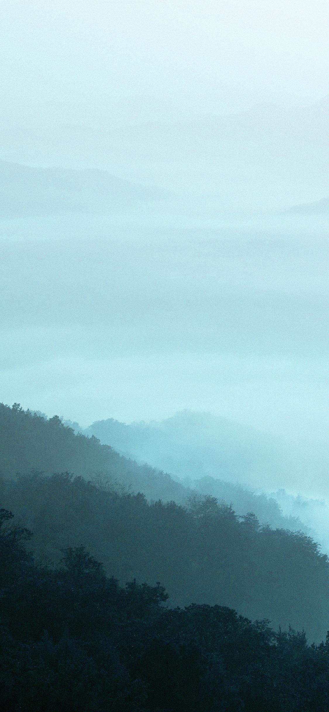 iPhoneXpapers.com-Apple-iPhone-wallpaper-mn01-mountain-fog-green-nature