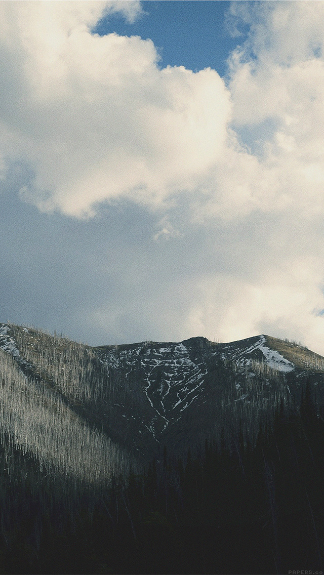 Freeios8com Iphone Wallpaper Mn34 Mountain Forest