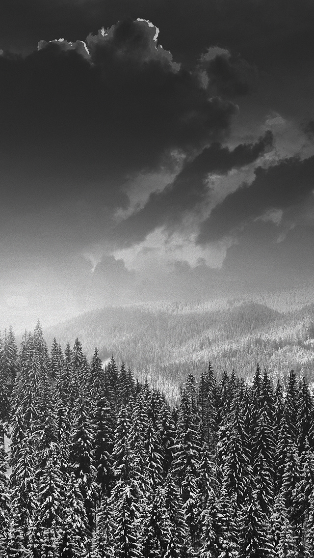 freeios8.com-iphone-4-5-6-plus-ipad-ios8-mo03-winter-mountain-snow-dark-bw-nature
