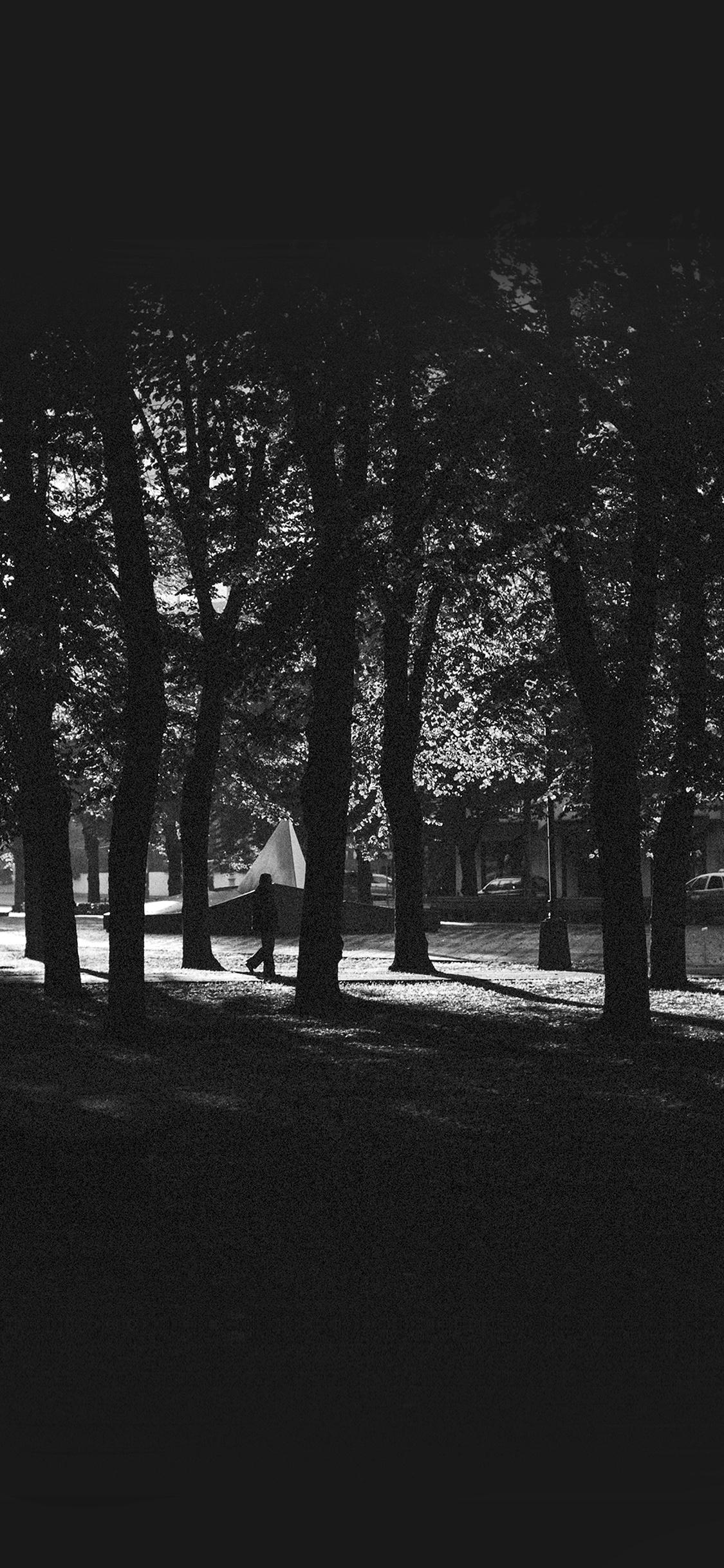 iPhonexpapers.com-Apple-iPhone-wallpaper-mo43-backyard-wood-dark-nature-in-city