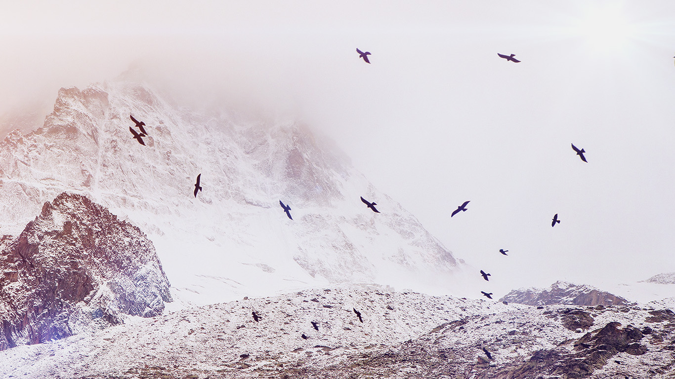 desktop-wallpaper-laptop-mac-macbook-airmo74-winter-mountain-bird-rene-reichelt-flare-nature-wallpaper