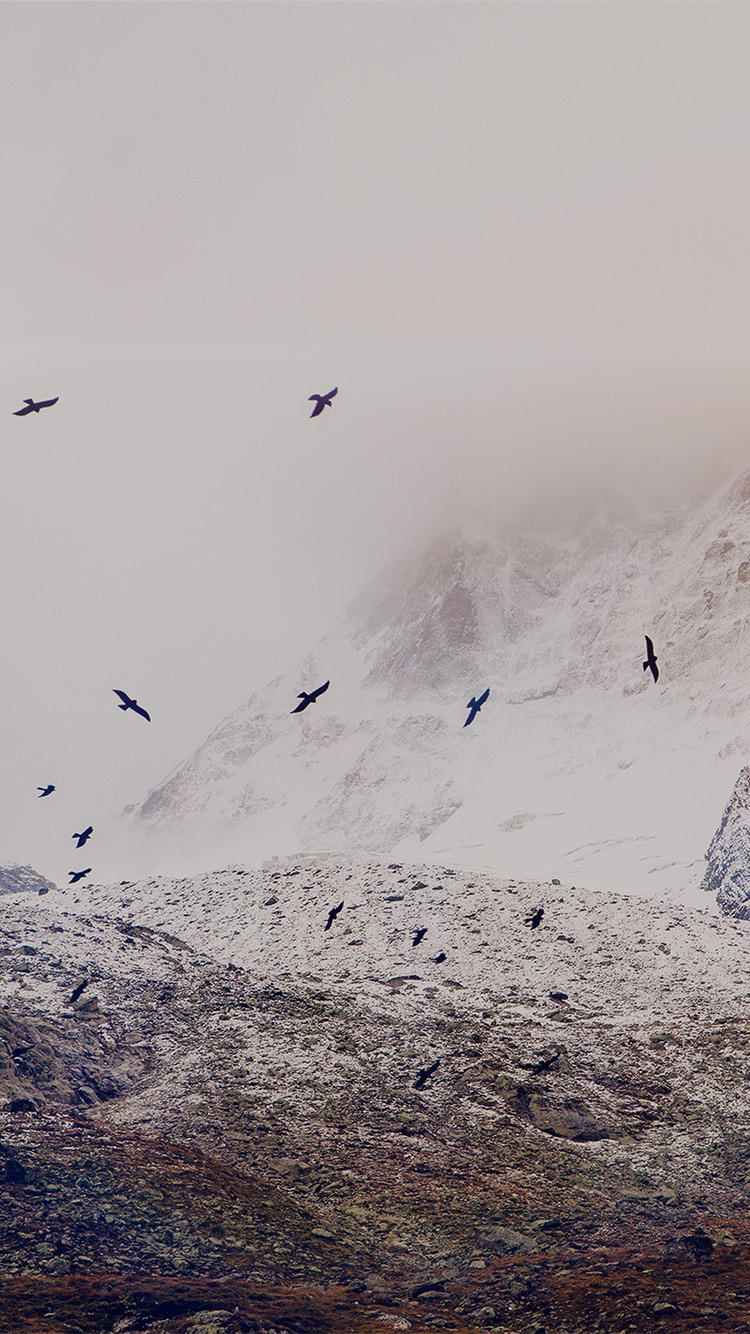 iPhone6papers.co-Apple-iPhone-6-iphone6-plus-wallpaper-mo75-winter-mountain-bird-rene-reichelt-dark-nature