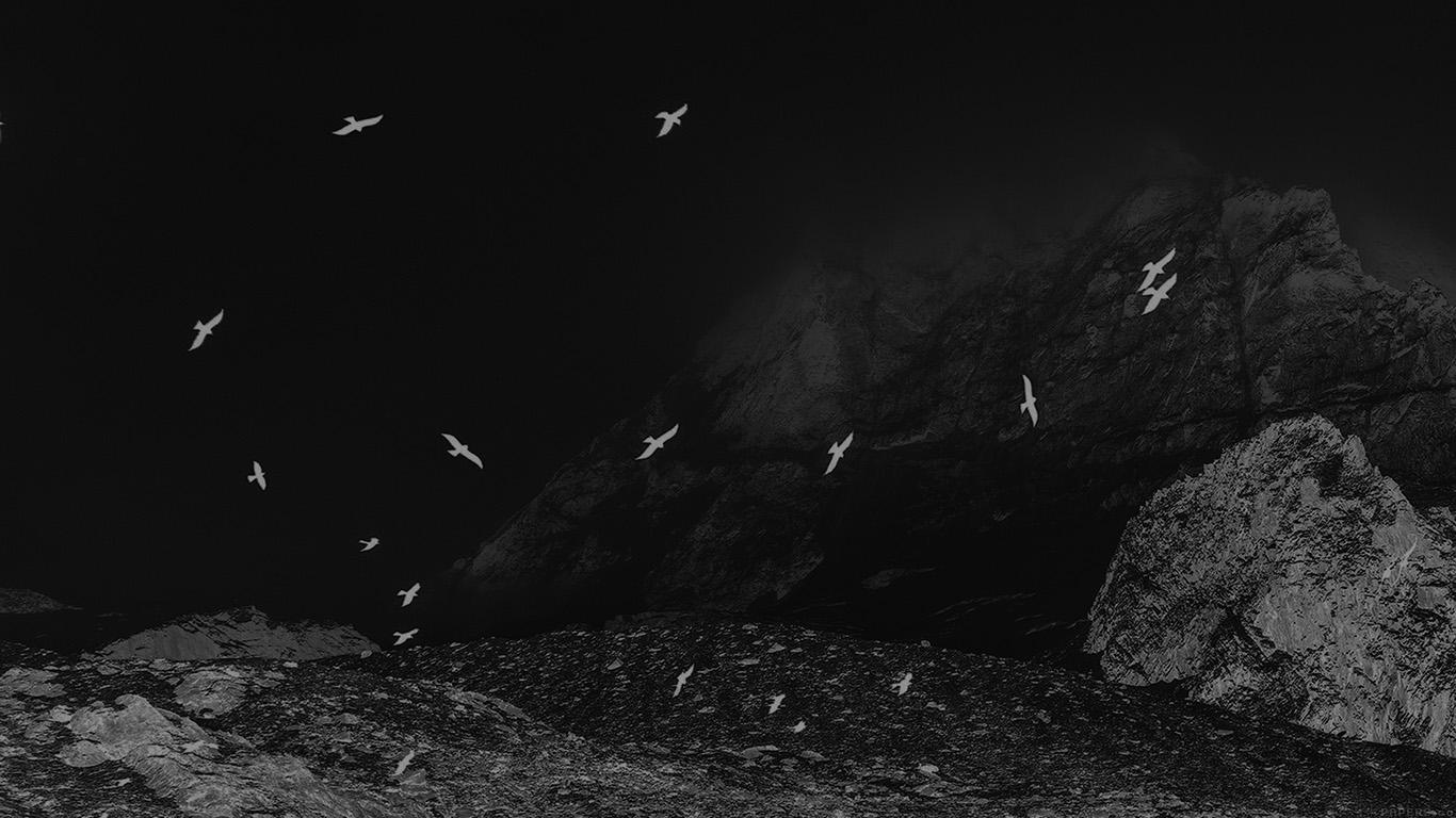 desktop-wallpaper-laptop-mac-macbook-airmo76-winter-mountain-bird-rene-reichelt-black-nature-wallpaper