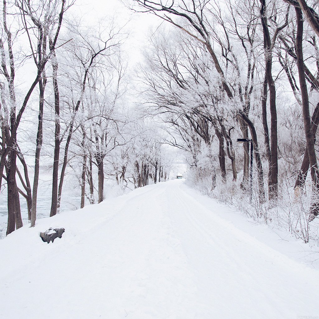 android-wallpaper-mp49-winter-road-romantic-nature-mountain-snow-white-wallpaper