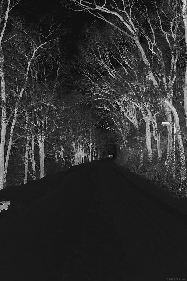 mp51-winter-scary-road-nature-mountain-dark - Papers.co
