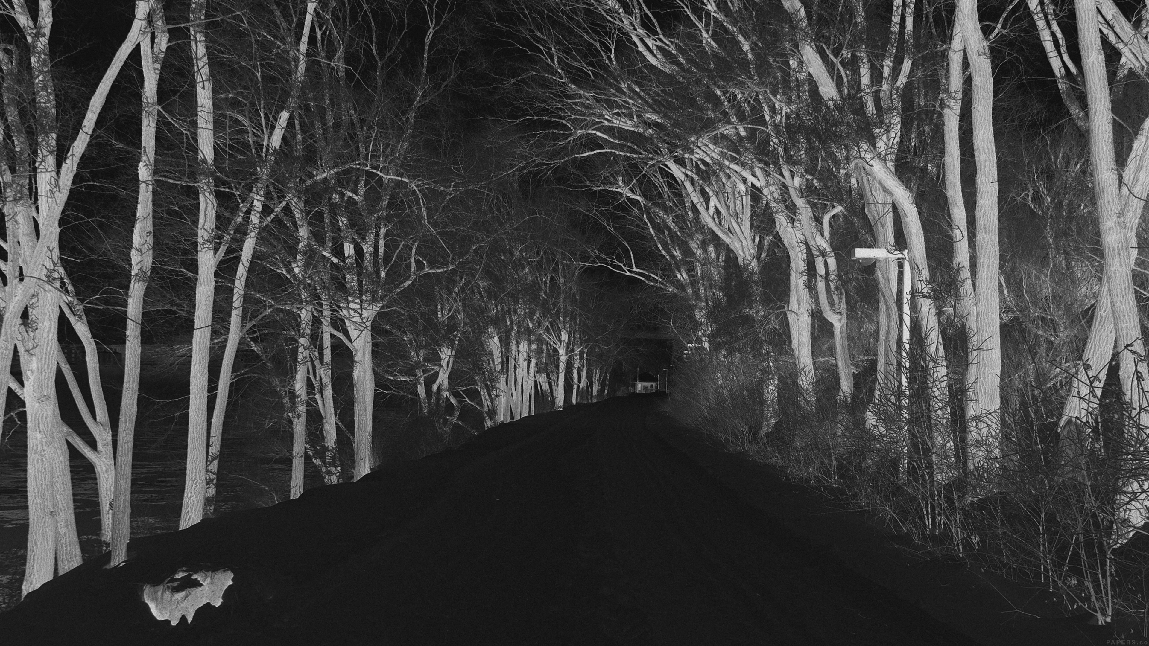 Mp51 Winter Scary Road Nature Mountain Dark