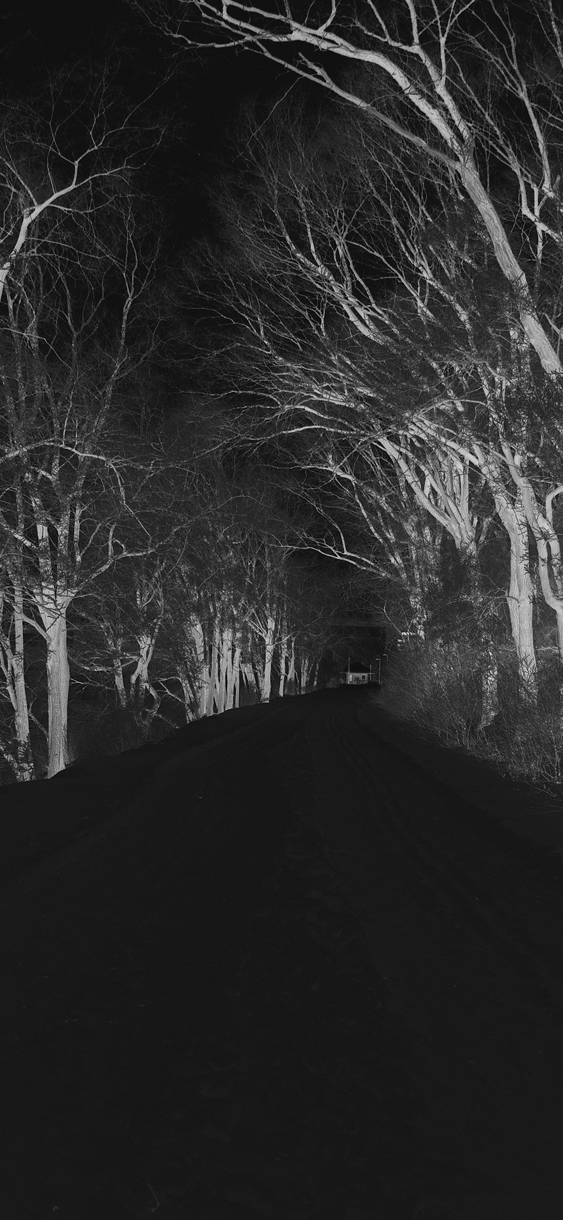 iPhoneXpapers.com-Apple-iPhone-wallpaper-mp51-winter-scary-road-nature-mountain-dark