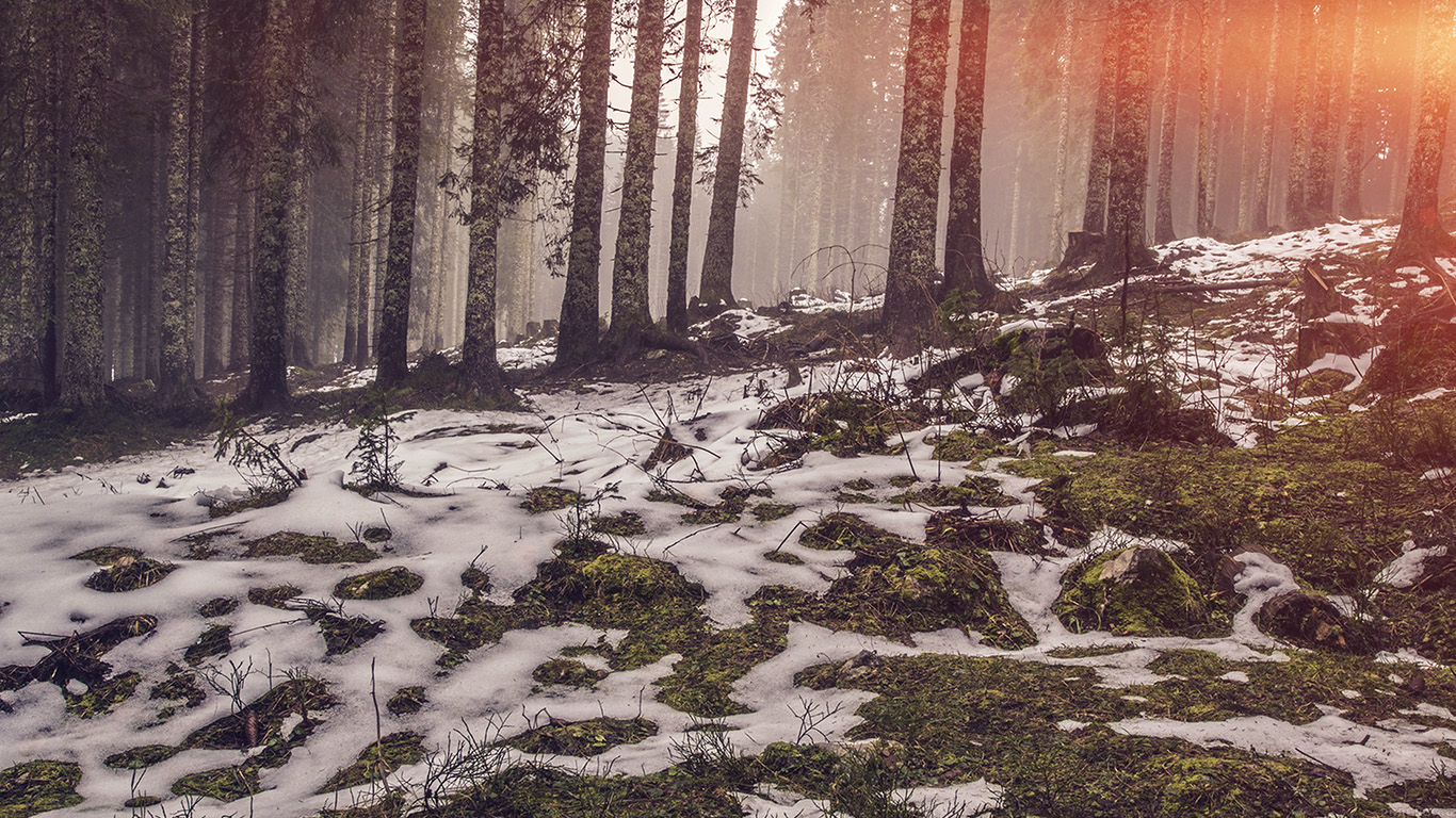 desktop-wallpaper-laptop-mac-macbook-air-mq53-mountain-snow-woods-nature-flare-wallpaper