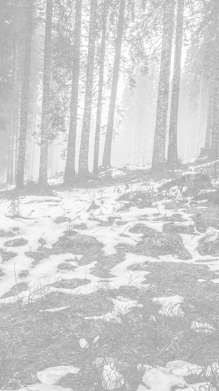 Papers.co-iPhone5-iphone6-plus-wallpaper-mq55-mountain-snow-woods-nature-white-bw