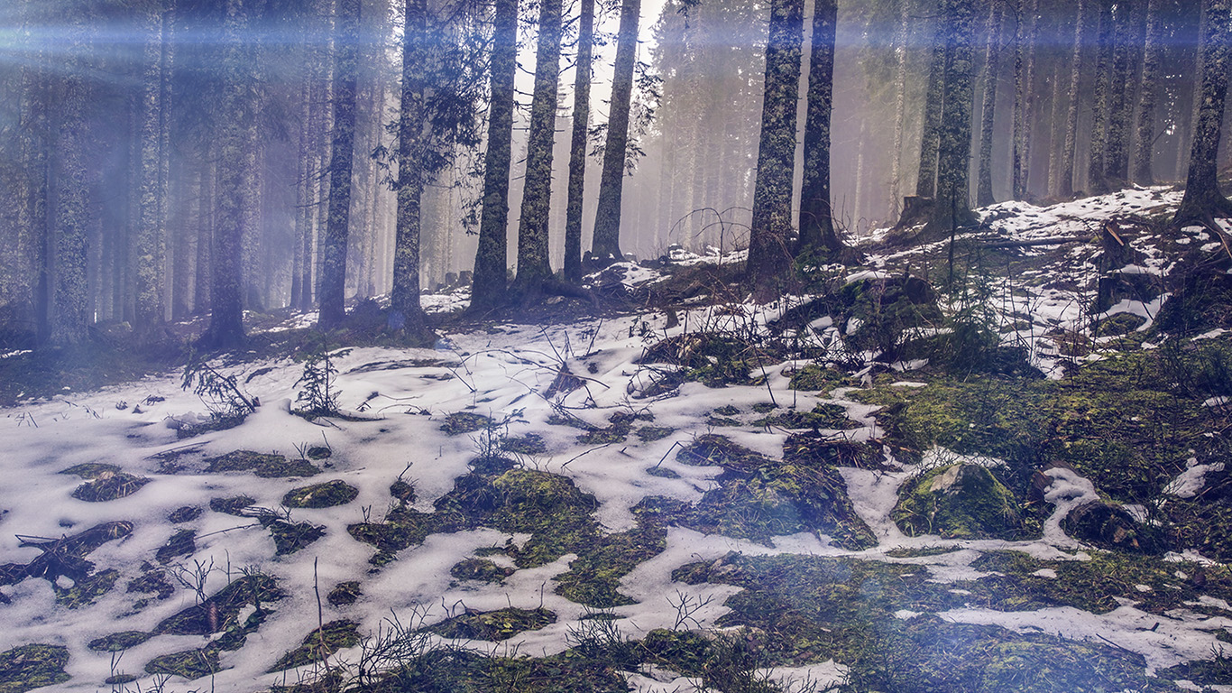 desktop-wallpaper-laptop-mac-macbook-airmq56-mountain-snow-woods-nature-blue-flare-wallpaper