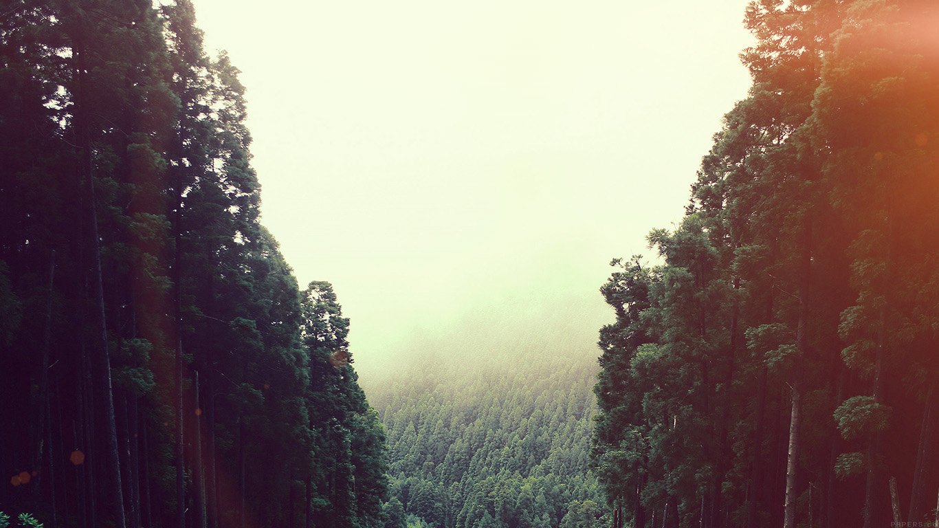 desktop-wallpaper-laptop-mac-macbook-air-mq88-mountain-mirror-green-wood-nature-flare-wallpaper