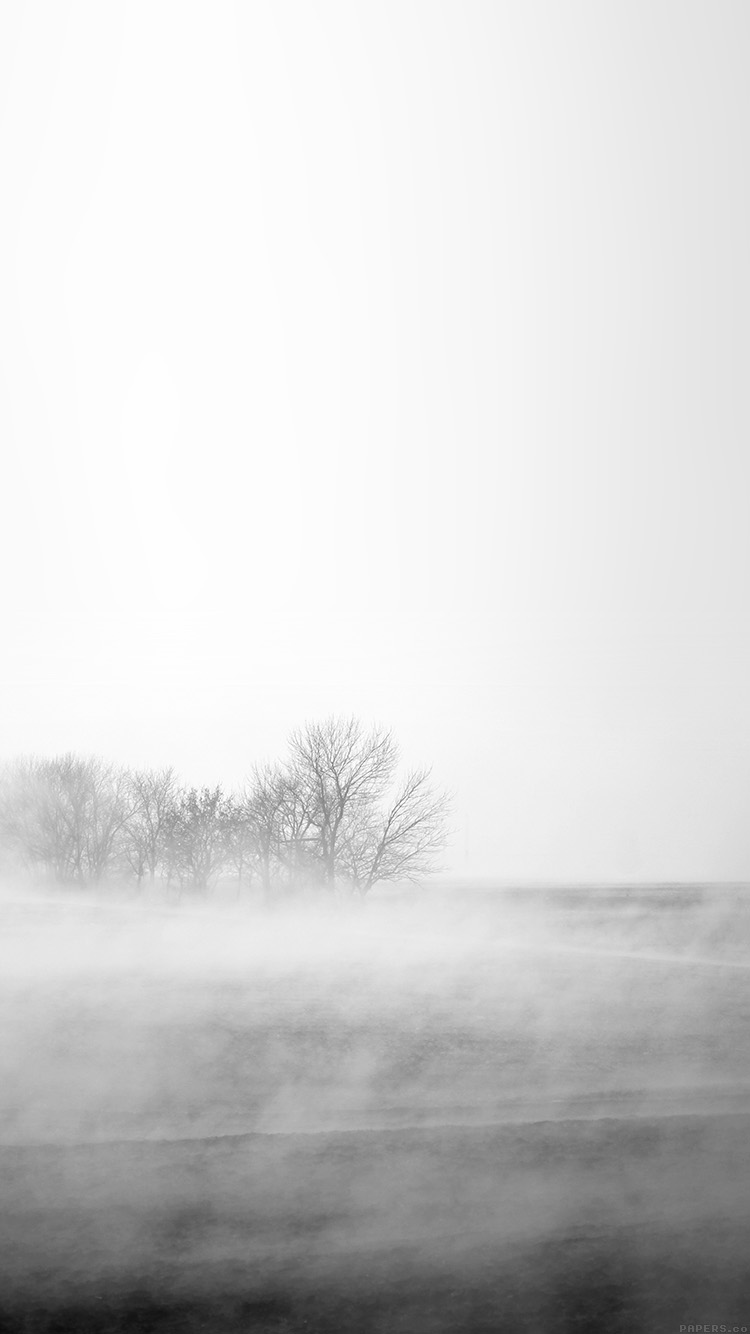 Papers.co-iPhone5-iphone6-plus-wallpaper-mr13-fog-white-field-nature