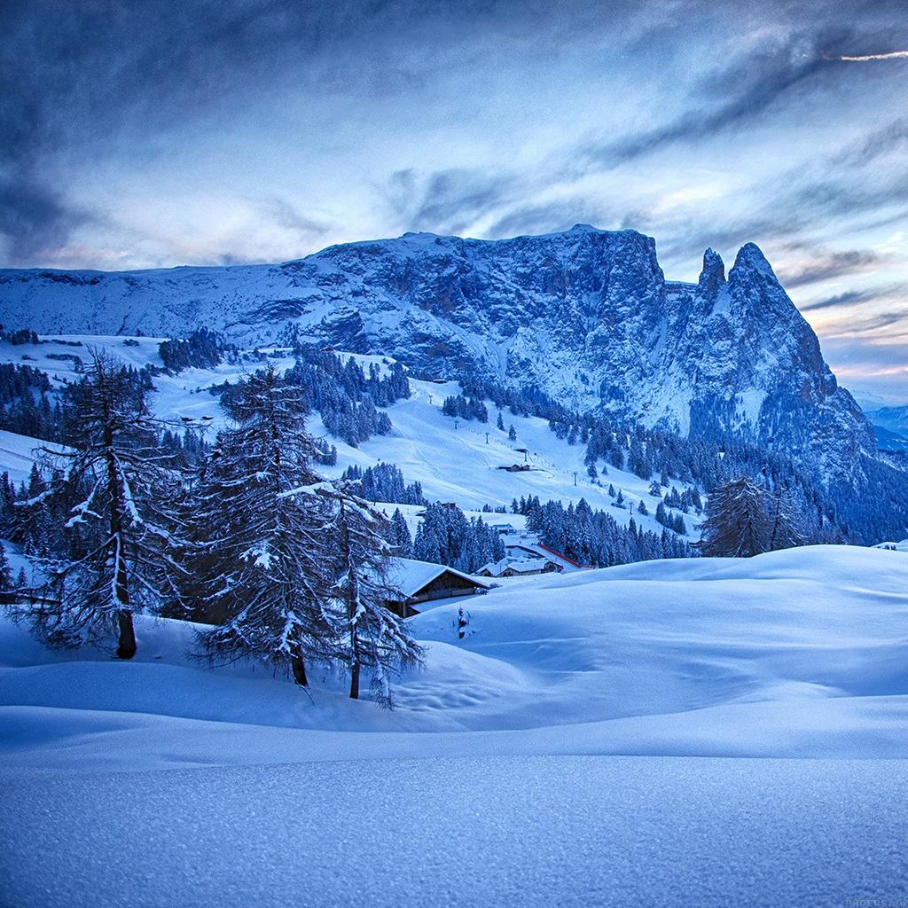 Winter Wallpaper: Nature