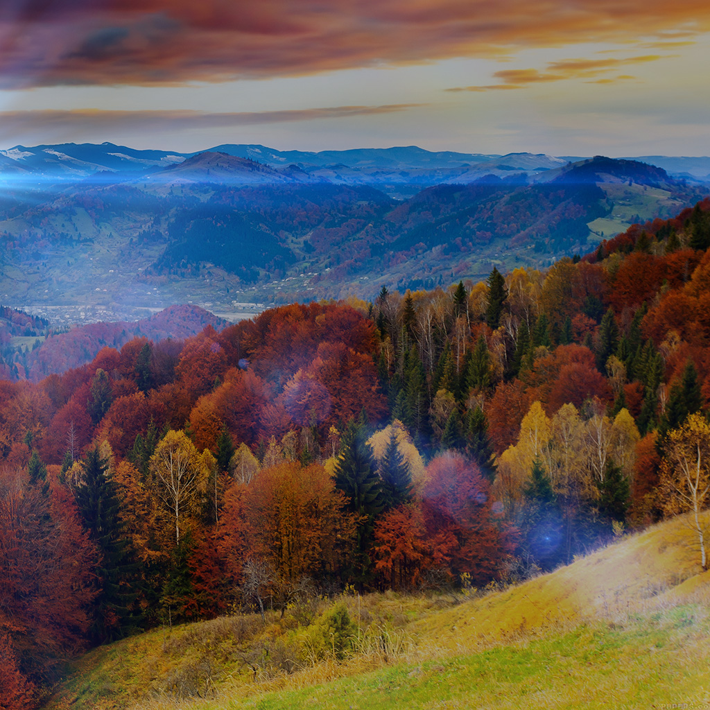 android-wallpaper-mr51-fall-mountain-fun-red-orange-tree-flare-nature-wallpaper