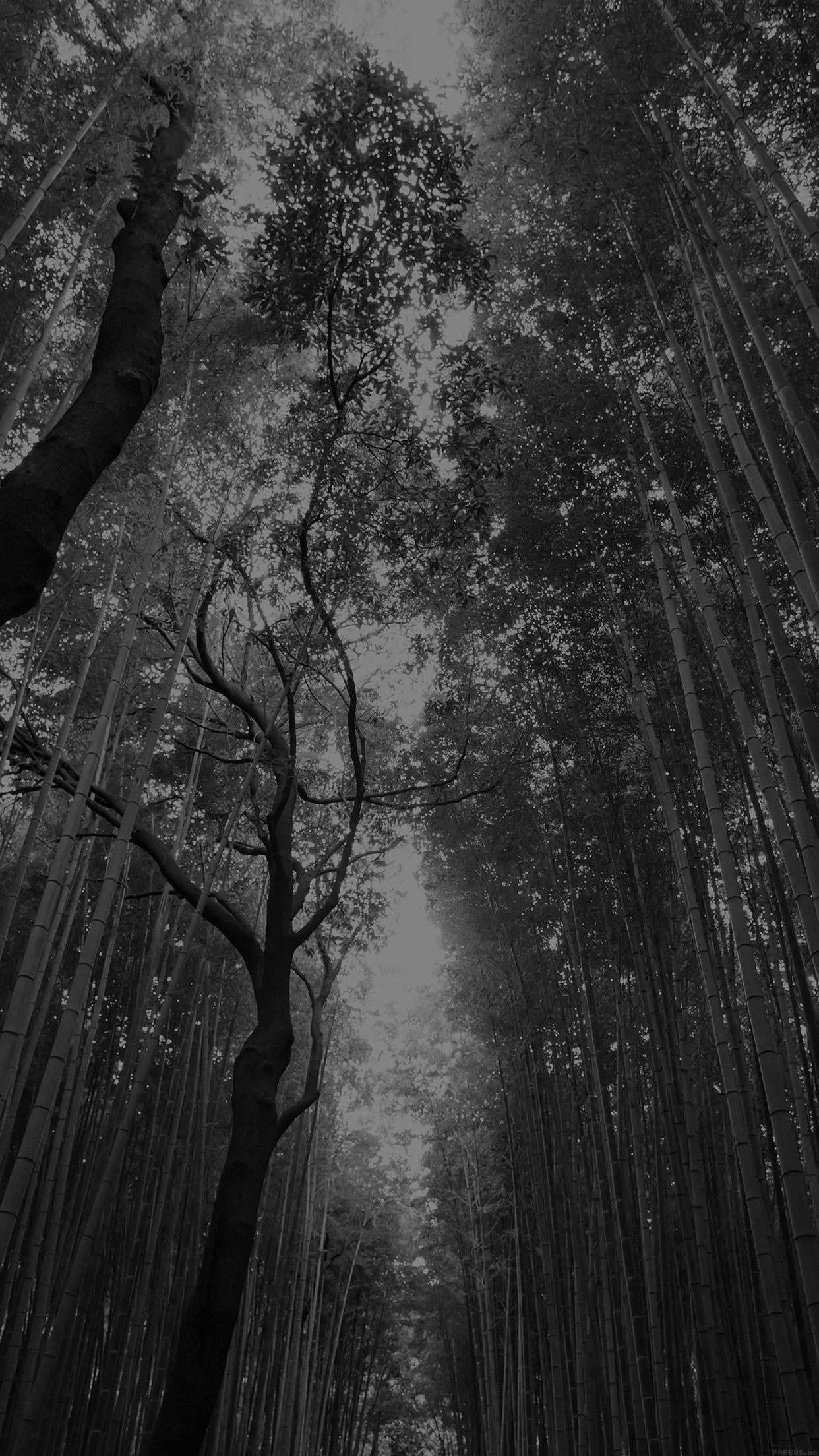 Iphone x - Nature wallpaper dark ...
