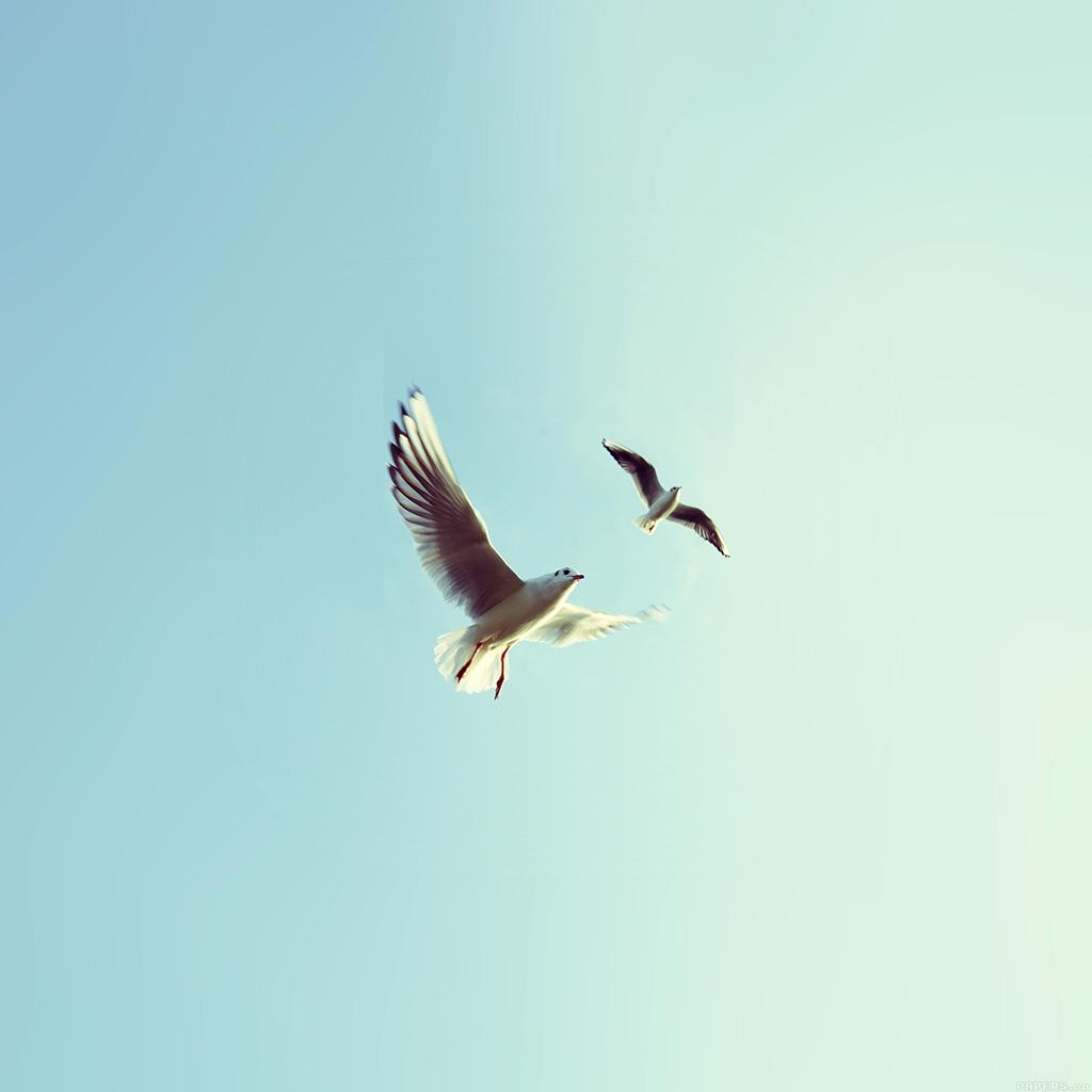 animal minimal sky