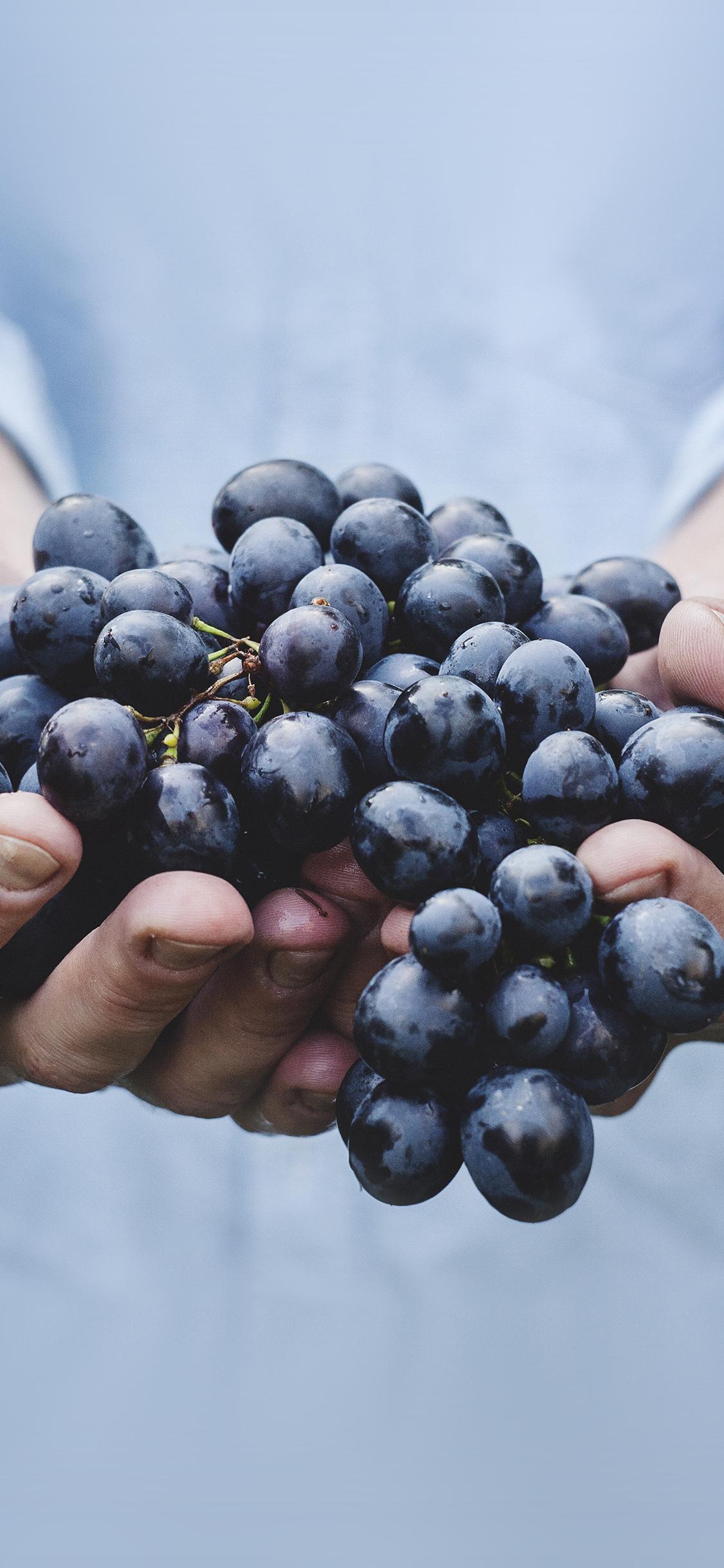 iPhoneXpapers.com-Apple-iPhone-wallpaper-ms41-farmer-food-grapes-fruit-nature-bokeh