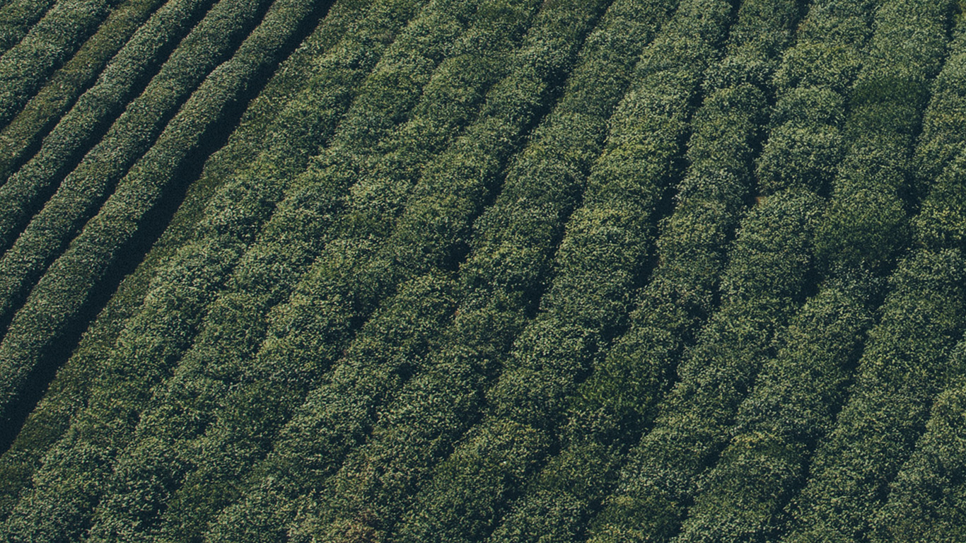 desktop-wallpaper-laptop-mac-macbook-air-mt55-green-field-nature-farm-summer-wallpaper
