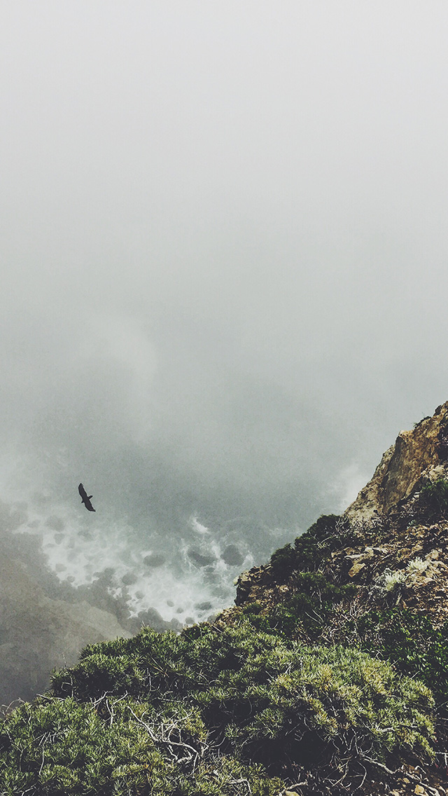 freeios8.com-iphone-4-5-6-plus-ipad-ios8-mt79-mountain-bird-cliff-animal-fog-cloud