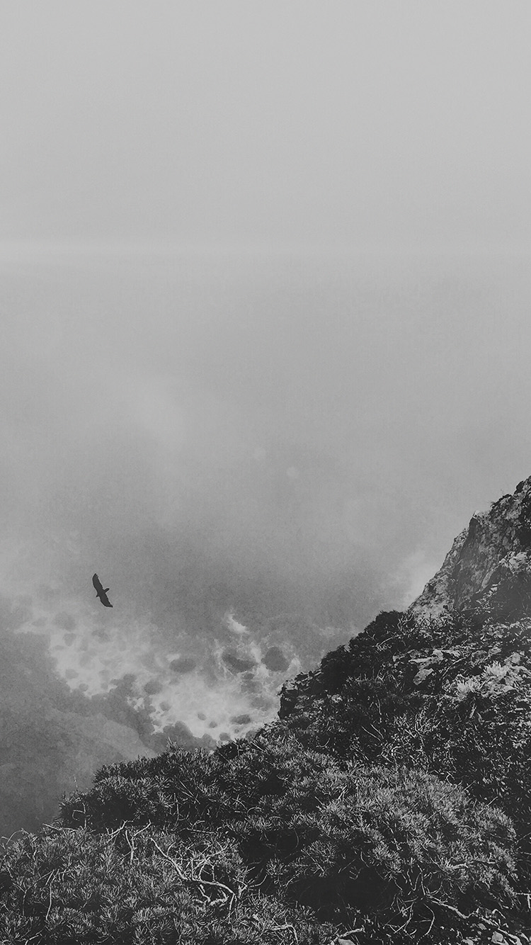 iPhonepapers.com-Apple-iPhone-wallpaper-mt81-mountain-bird-cliff-animal-fog-cloud-flare-bw