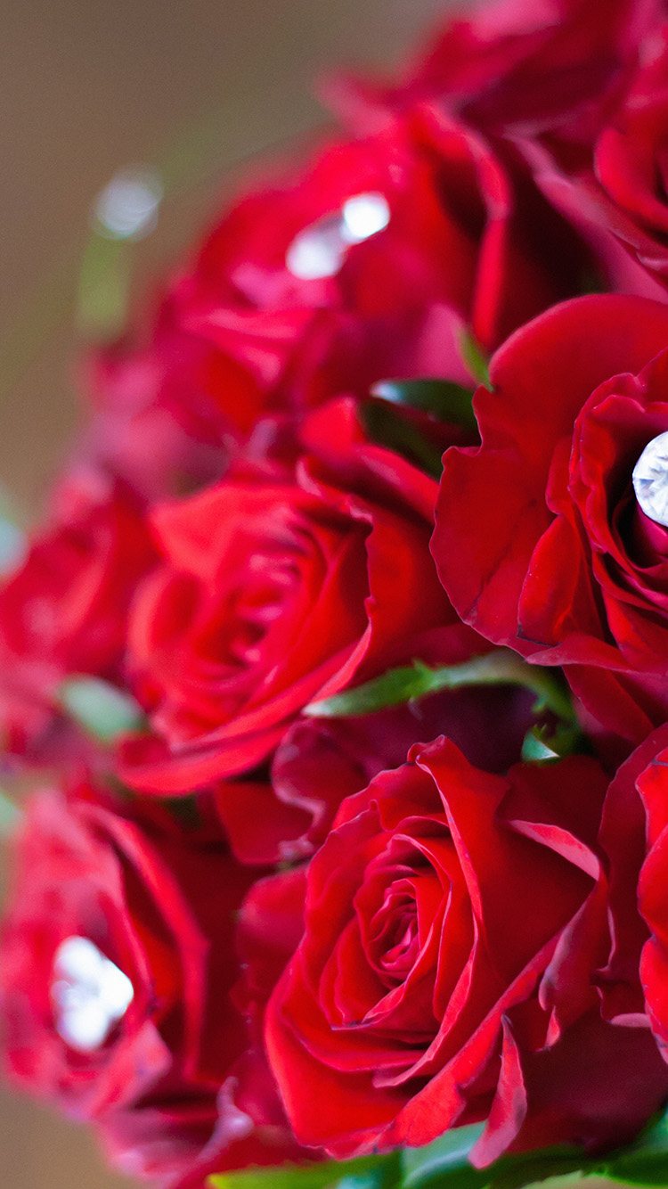 iPhonepapers.com-Apple-iPhone8-wallpaper-mt87-flower-with-diamond-red-love-propose