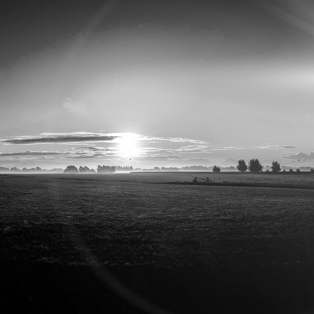 wallpaper-mt99-sunny-morning-farm-peace-nature-bw-dark-wallpaper