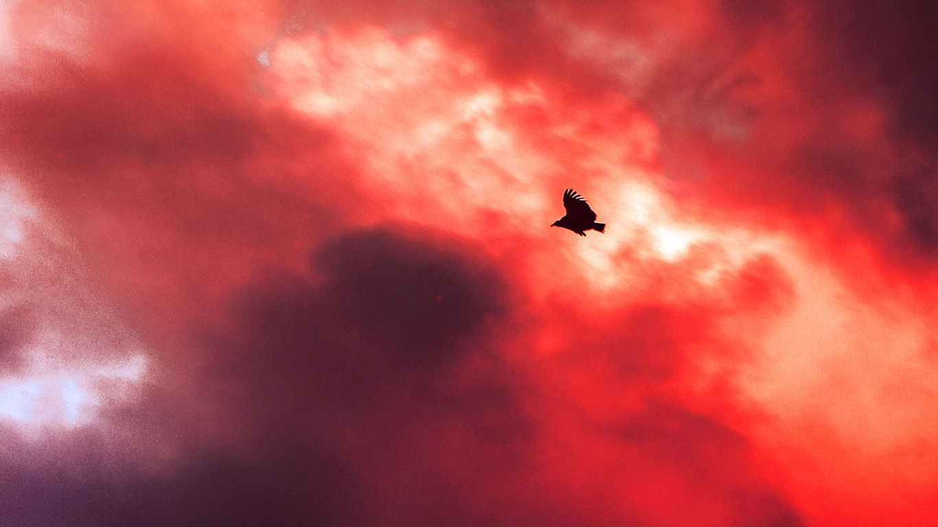 desktop-wallpaper-laptop-mac-macbook-air-mu09-bird-fly-sky-clouds-red-sunset-fire-nature-animal-wallpaper