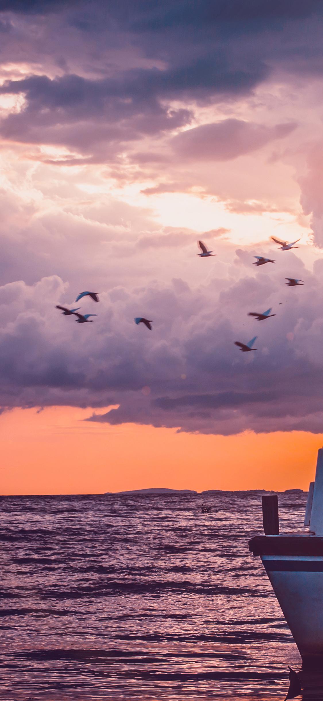 iPhoneXpapers.com-Apple-iPhone-wallpaper-mu50-sea-sunset-birds-sky-ocean-ship-nature-flare
