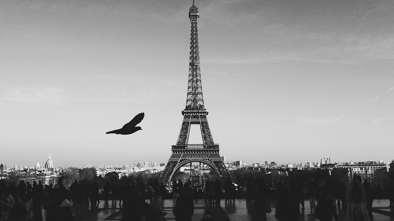 desktop-wallpaper-laptop-mac-macbook-airmu80-paris-eiffel-tower-tour-dark-bw-bird-france-wallpaper