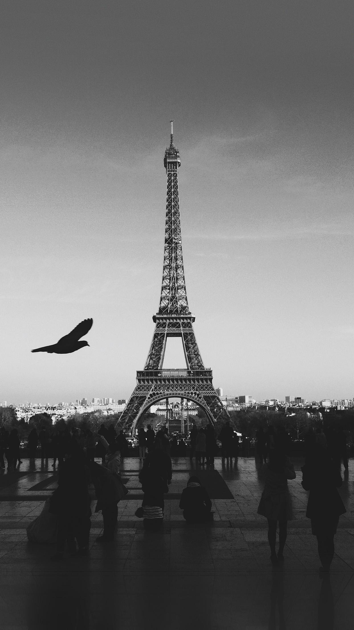 Mu80 Paris Eiffel Tower Tour Dark Bw Bird France Papers Co