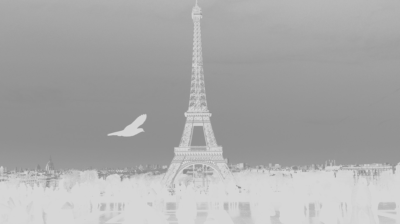 desktop-wallpaper-laptop-mac-macbook-air-mu81-paris-eiffel-tower-tour-dark-bw-bird-france-white-wallpaper