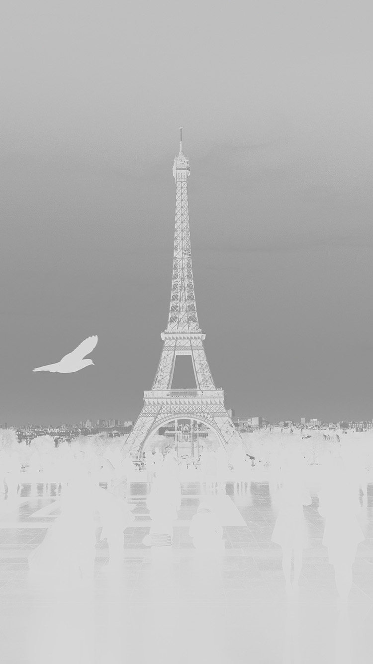 iPhone6papers.co-Apple-iPhone-6-iphone6-plus-wallpaper-mu81-paris-eiffel-tower-tour-dark-bw-bird-france-white