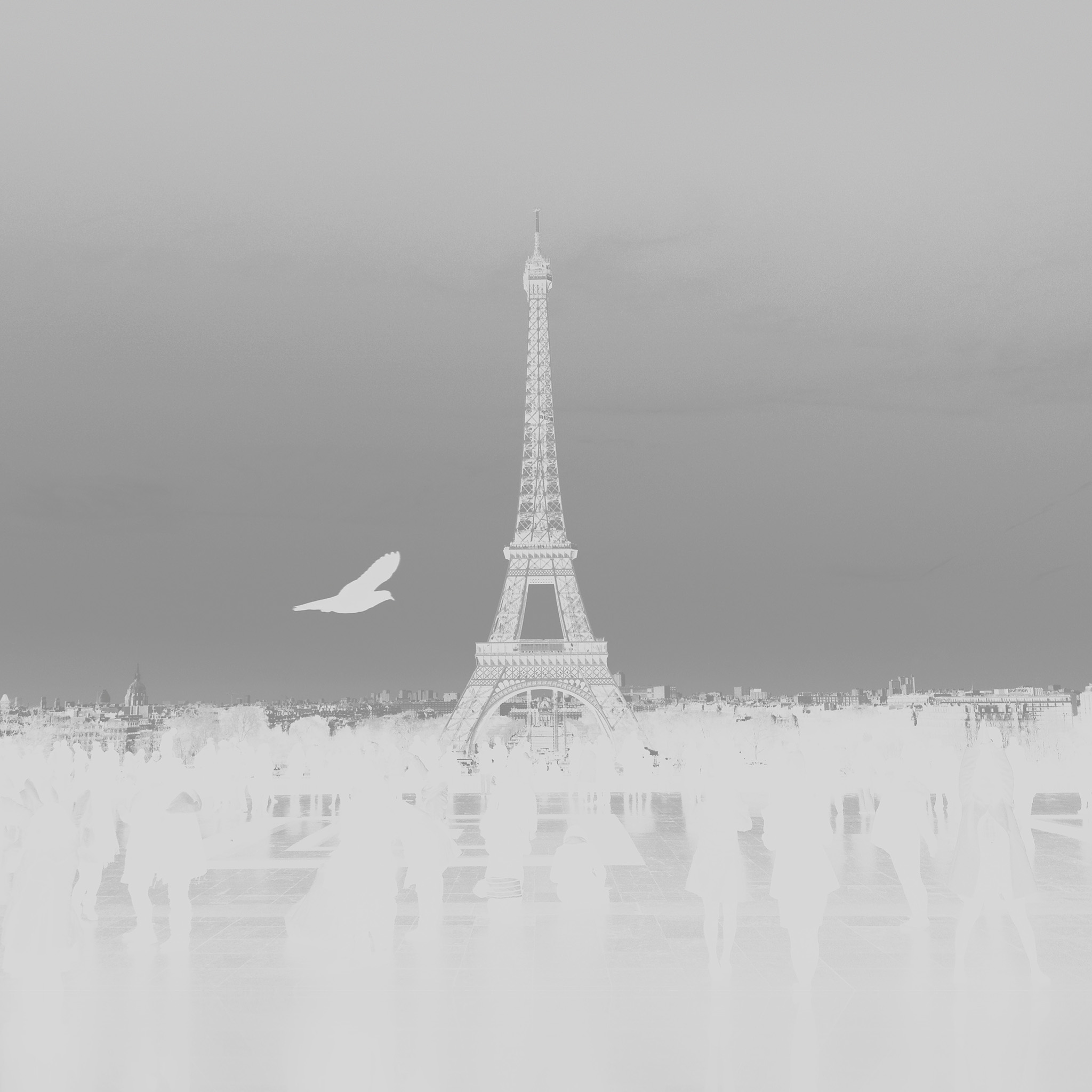 paris essay Paris life magazine gives you a different take on the paris you thought you already knew.