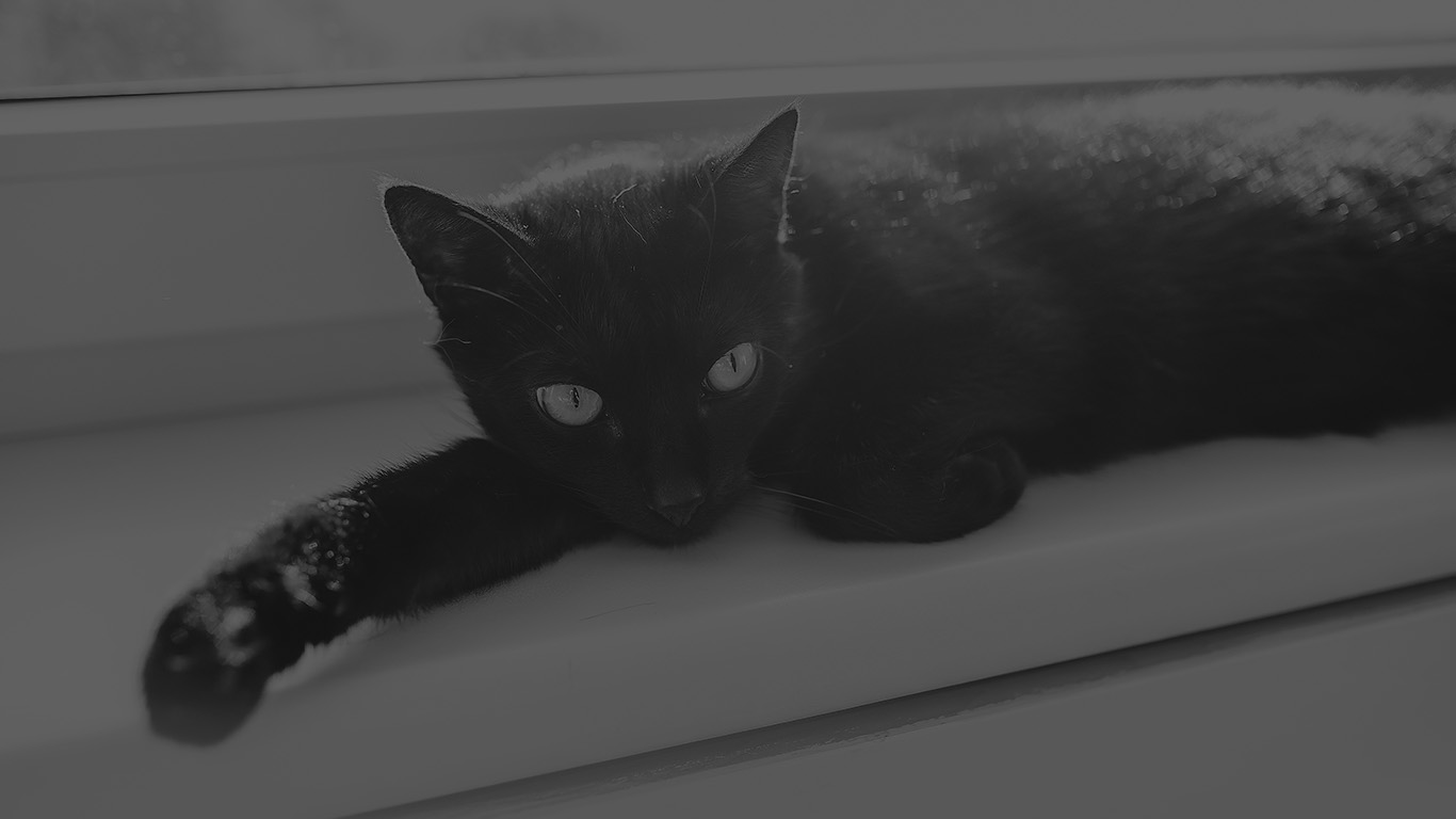 desktop-wallpaper-laptop-mac-macbook-air-mv33-black-cat-animal-cute-watching-dark-bw-wallpaper