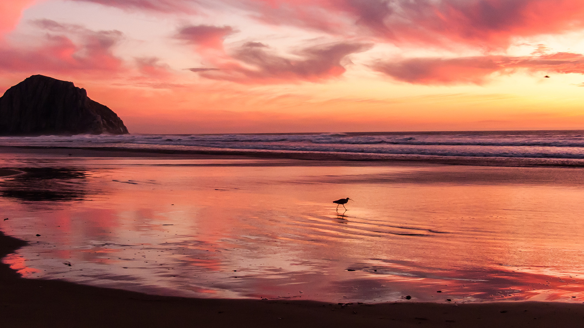 sunset beach nature sea - photo #1