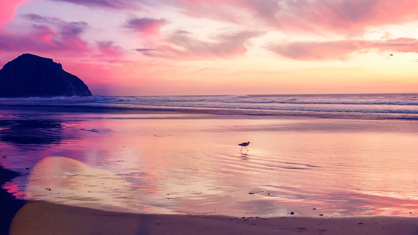 desktop-wallpaper-laptop-mac-macbook-air-mv56-sunset-beach-bird-red-orange-nature-sea-bokeh-wallpaper