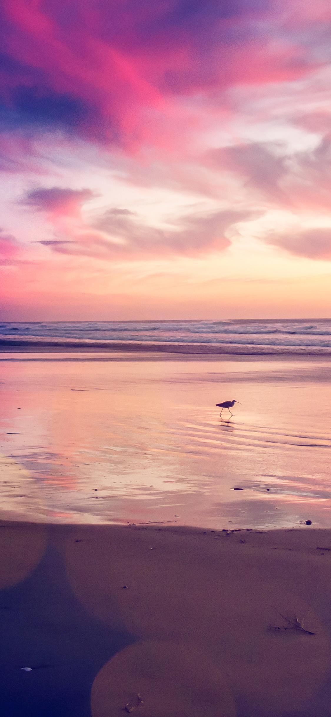 Iphonexpapers Com Iphone X Wallpaper Mv56 Sunset Beach Bird Red