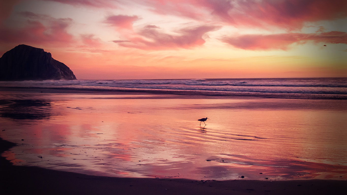 desktop-wallpaper-laptop-mac-macbook-air-mv57-sunset-beach-bird-red-orange-nature-sea-vignette-wallpaper