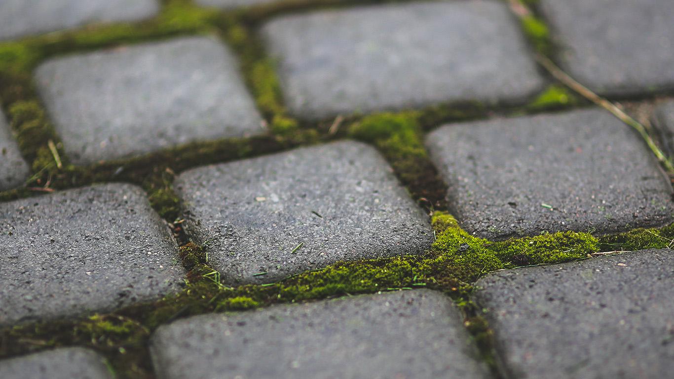 desktop-wallpaper-laptop-mac-macbook-air-mv87-garden-moss-stone-nature-road-city-wallpaper