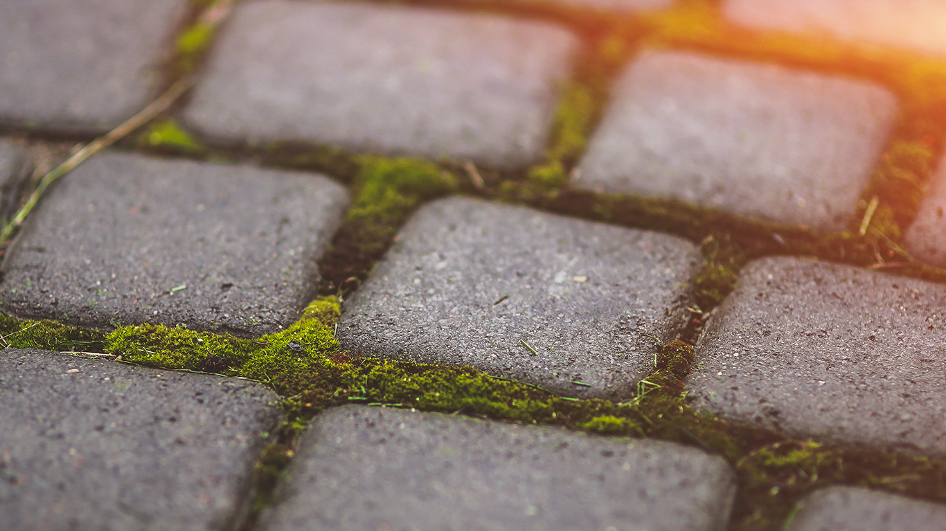 wallpaper-desktop-laptop-mac-macbook-mv88-garden-moss-stone-nature-road-city-flare