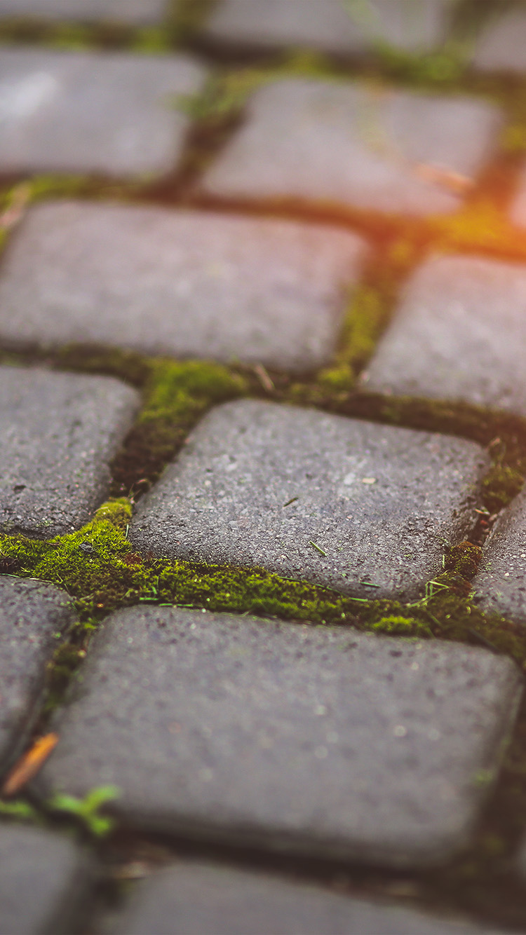 iPhone6papers.co-Apple-iPhone-6-iphone6-plus-wallpaper-mv88-garden-moss-stone-nature-road-city-flare