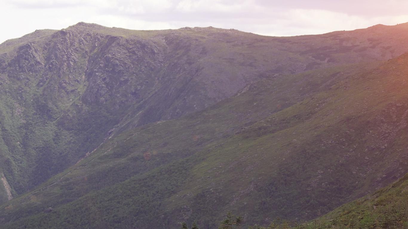 desktop-wallpaper-laptop-mac-macbook-air-mw00-mountain-green-nature-wood-forest-flare-wallpaper