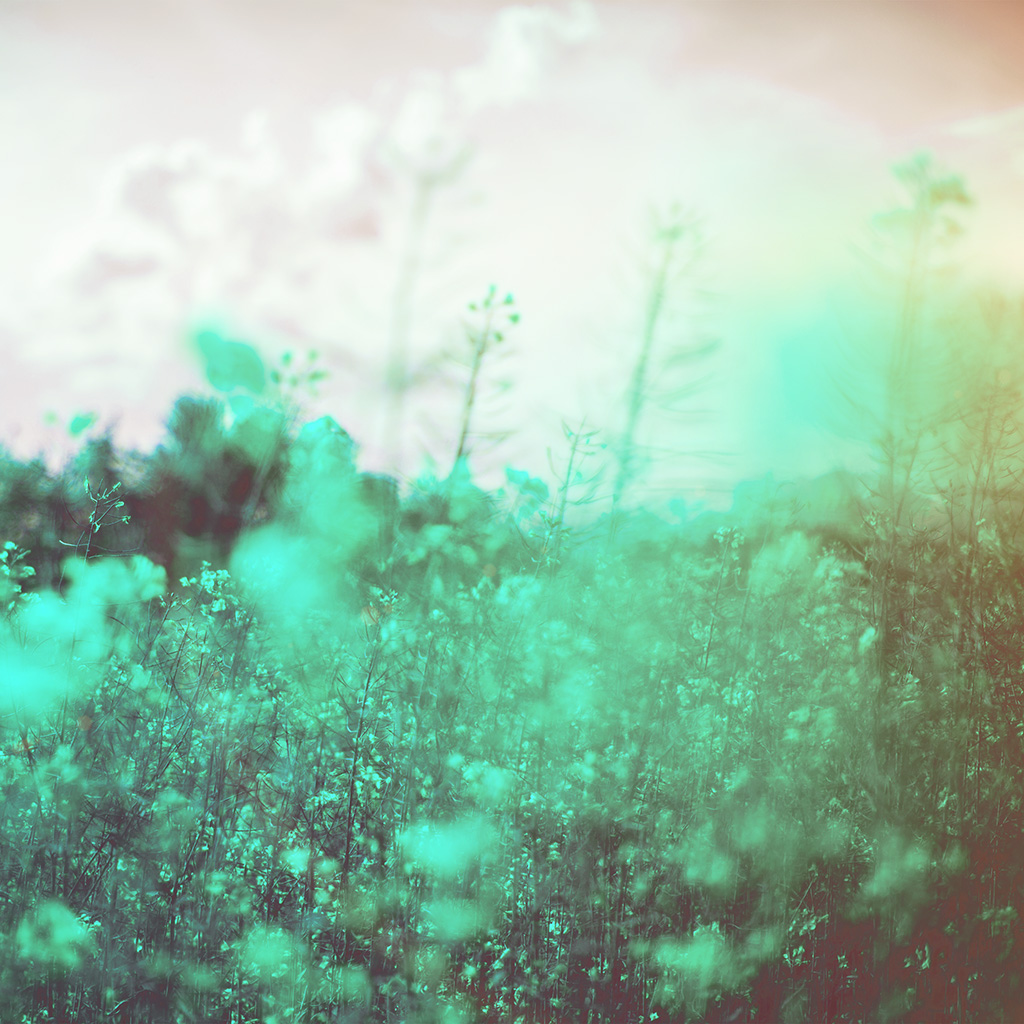 wallpaper-mw22-nature-green-flower-bokeh-spring-happy-flare-wallpaper